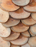 pine wood Stock Image
