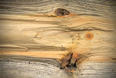 Pine wood texture background. Pattern Stock Photography