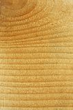 Pine wood texture. Close up beautiful pine wood texture background royalty free stock photography