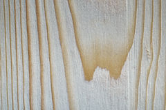Pine wood texture. Stock Image