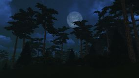 Pine wood under full moon Royalty Free Stock Photography