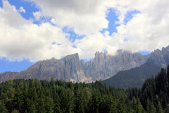 Pine woods & mountain rocks, Italy Royalty Free Stock Photography
