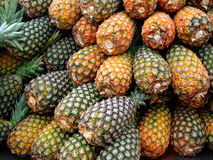 Pineaple. Exotism,tropical fruit, vitamins Stock Photos