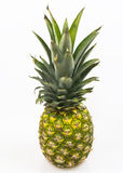 Pineaple Stock Photography