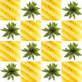 Pineaple grafische vierkante collage Stock Fotografie
