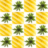 Pineaple graphic square collage Stock Photography