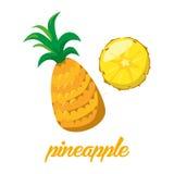 Pineaple owoc plakatowe w kreskówki stylowy przedstawiać całym i połówce świezi soczyści cytrusy na białym tle Zdjęcie Royalty Free