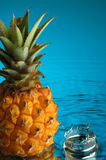 Pineapple #1. Pineapple, water and mirror surface Royalty Free Stock Images