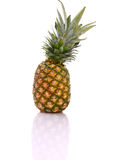 A pineapple with Royalty Free Stock Photo