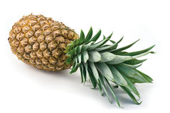 Pineapple. A whole pineapple against a white background Royalty Free Stock Images