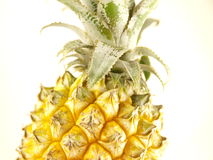Pineapple. A pineapple on white background with leaves Stock Image