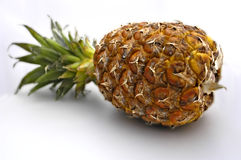 Free Pineapple Stock Photography - 1299912