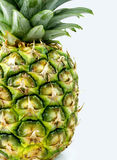 Pineapple. Whole pineapple on a white background Royalty Free Stock Image