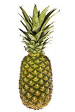 Pineapple Stock Photo