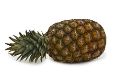 Pineapple. Entire clump with pineapple on white background stock image