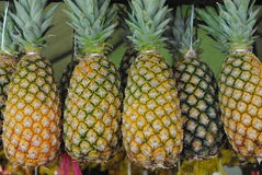 Pineapple. In fair, tropical fruit of brazil, south america Stock Photo