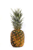 Pineapple. Ripe sweet pineapple isolated on white background royalty free stock image