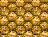 Pineapple. Texture of pineapple Stock Images