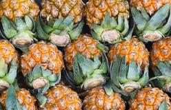 Pineapple. Royalty Free Stock Image