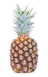 Pineapple. Isolated on white background Royalty Free Stock Photos