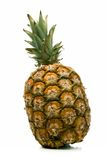Pineapple. Ripe pineapple isolated over white background Stock Photography