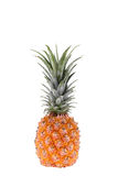 Pineapple Royalty Free Stock Images