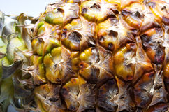 Free Pineapple Stock Photography - 27286752