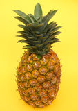 Pineapple. On yellow background Royalty Free Stock Photo