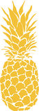 Pineapple royalty free illustration