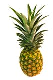 Pineapple. Fresh pineapple isolated over white Stock Photography