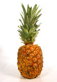 Pineapple. Whole pineapple with leaves against white Royalty Free Stock Images
