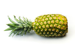 Pineapple. Fresh pineapple on white background stock image