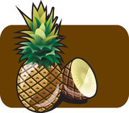 Pineapple. Vector color illustration of a delicious tropical pineapple. The vector file is in AI-EPS8 format Royalty Free Stock Photography