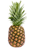 Pineapple. Fruit isolated on a white background stock photos