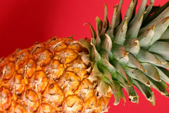 Pineapple. Close up of a pineapple on red background Stock Photos