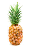 Pineapple Stock Photography