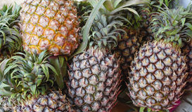 Free Pineapple Stock Image - 70515551