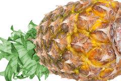 Pineapple. Fresh pineapple on a white background Stock Photography