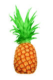Pineapple. Royalty Free Stock Images