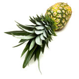 Pineapple Abstract Stock Photo