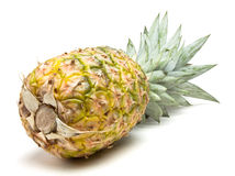Pineapple Abstract Royalty Free Stock Photography