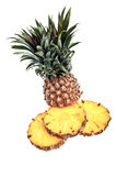 A pineapple against a white background Stock Photography
