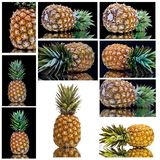 Pineapple from all sides Royalty Free Stock Photo