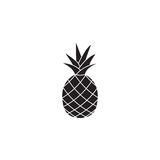 Pineapple and ananas soldi icon, healthy fruit. Vector graphics, a linear pattern on a white background, eps 10 royalty free illustration