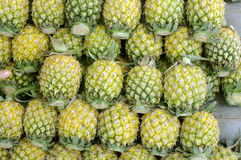 Pineapple background Royalty Free Stock Photography