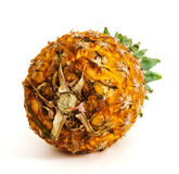 Pineapple on  background. Ripe pineapple on  background Royalty Free Stock Photography