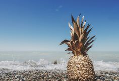 Pineapple on beach Royalty Free Stock Images
