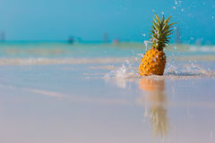 Pineapple on the beach. On blue sea background, water splashes royalty free stock image