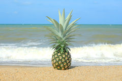Pineapple on the beach. With blue sky Royalty Free Stock Photography