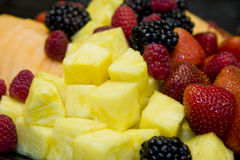 Pineapple and Berries Stock Image